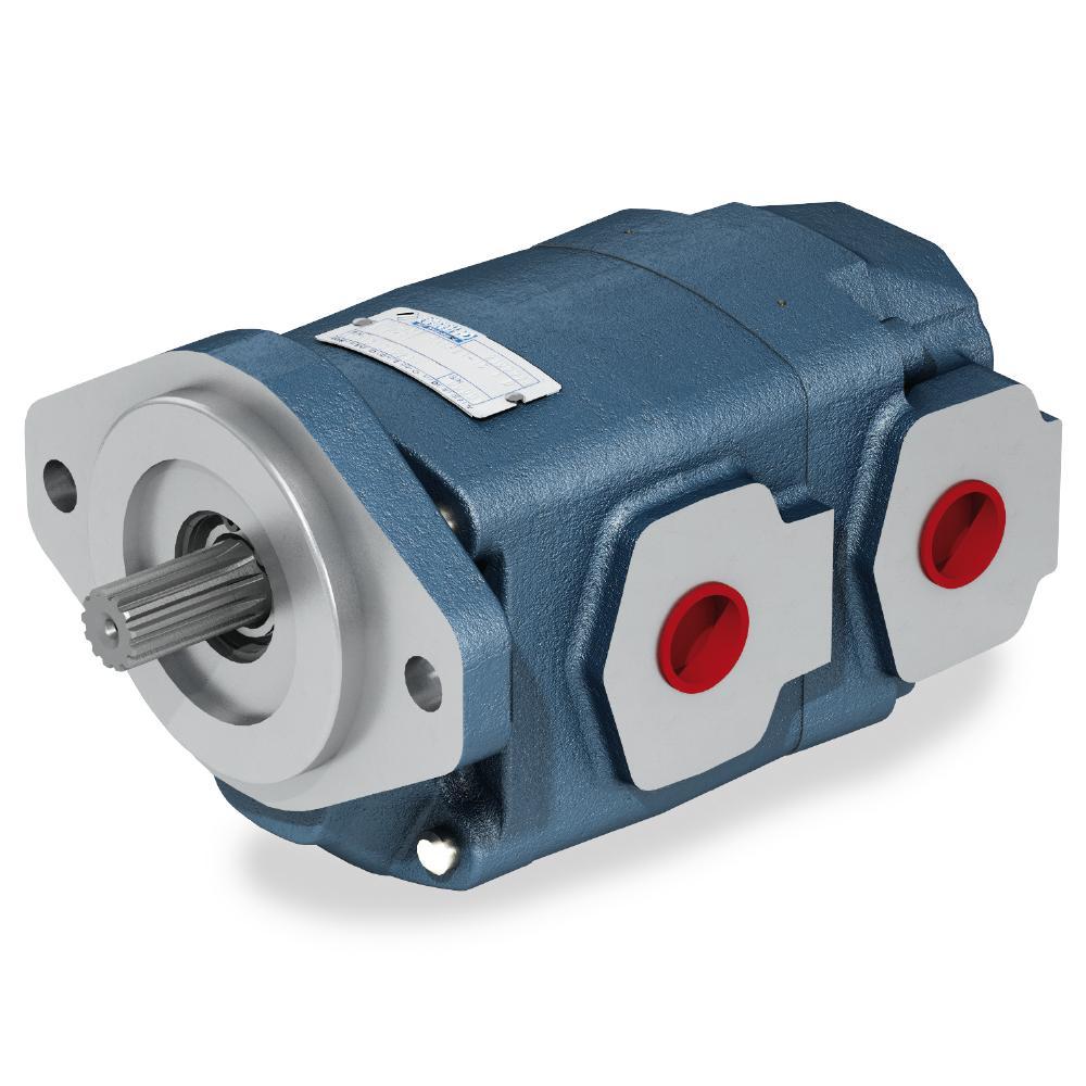 Gear pumps - cast iron body   Bondioli & Pavesi